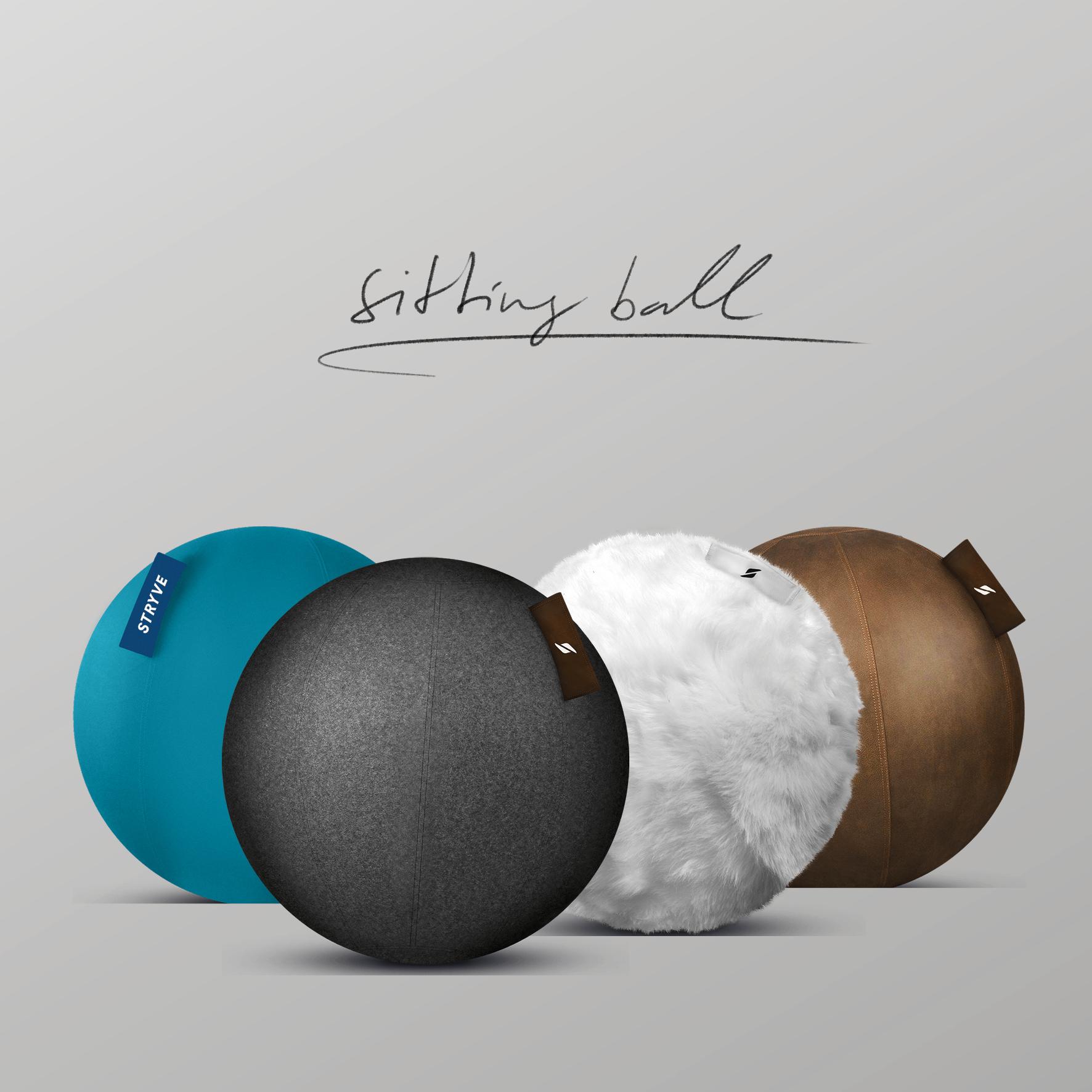 Ergonomic Sitting Ball